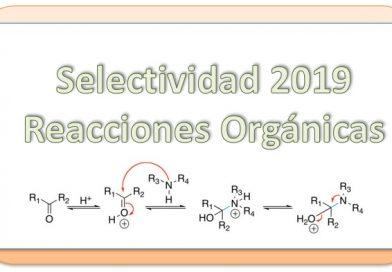 2019. Selectividad. Isomería, funciones y Reacciones Orgánicas